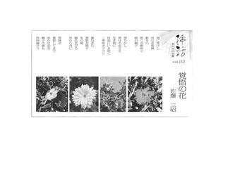 あの日の小窓・詩152.jpg
